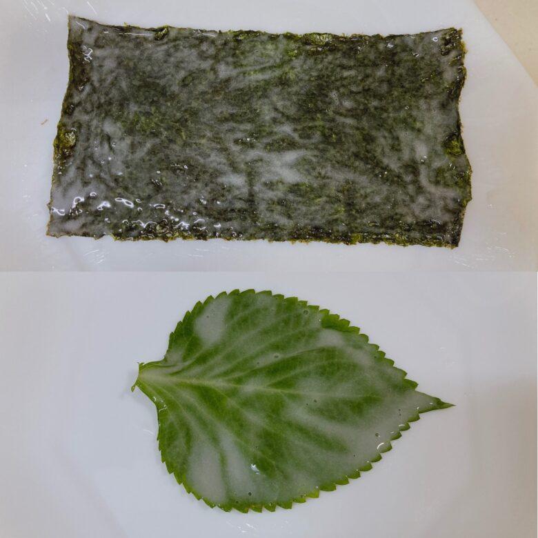 海苔とエゴマの葉